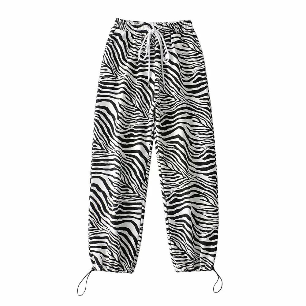 Zebra Sweatpants (same day shipping available)